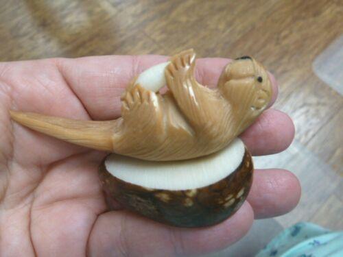 (TNE-OTT-524C) brown sea Otter Nutria TAGUA NUT Figurine Carving Vegetable ivory
