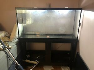 60 gallon fish tank / aquarium with stand