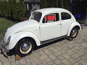 Volkswagen Beetle 1964 antique