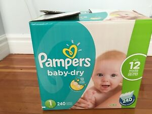 Pampers Baby-dry #1