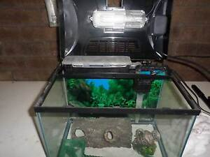 Small Fish Tank Woodvale Joondalup Area Preview