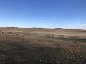 160 acres bare land