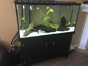 60 Marineland tank, stand, FLUVAL 406,  LED light, heater + more