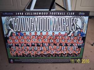 Collingwood Picture Block Mounted Athelstone Campbelltown Area Preview