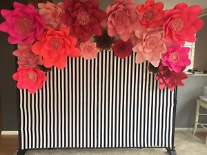 ***For Hire Only*** $250 Kate spade inspired backdrop Queens Park Canning Area Preview