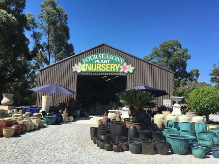 Four Seasons - Plants and Garden Decor
