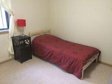 Room for rent for female. Near Carlingford and Parramatta Dundas Parramatta Area Preview