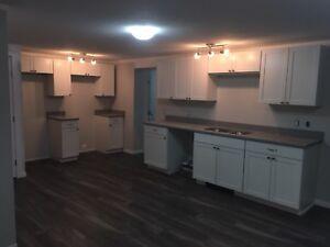 Basement apartment for rebt