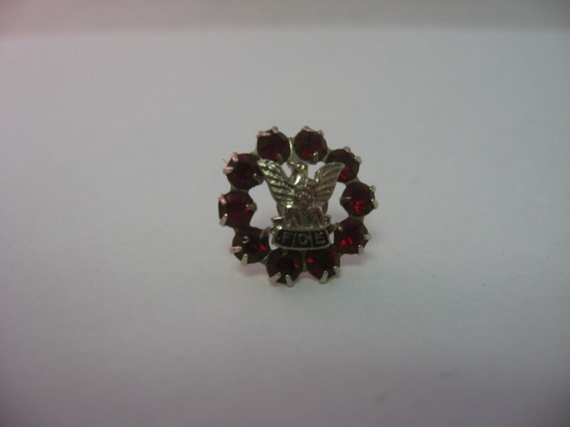 Gorgeous FOE Fraternal Order of Eagles Red Jewel Pin Award