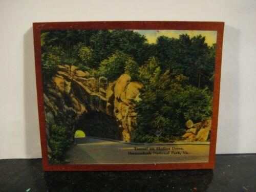 Skyline Drive Tunnel Shenandoah National Park Virginia Souvenir Decoupage Card