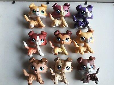 6pcs/Lot Littlest pet Shop random rare LPS Collie Dog Toy Christmas gift - Christmas Shop