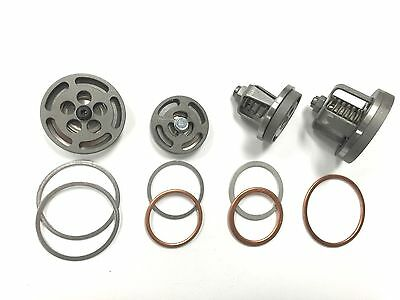 Z6795 Champion Valve Set With Head Unloaders And Gaskets For R15b Pl15a Pump