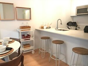 1 Bedroom Downtown Montreal 1 Month FREE
