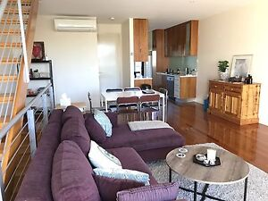 Friendly Housemate Wanted Brunswick East Moreland Area Preview