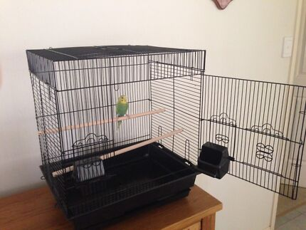 BRAND NEW perfect training bird cage $50ea :stands extra Eftpos avail