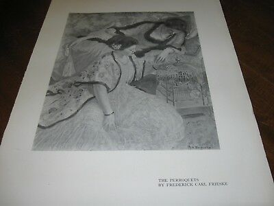 1911 Art Print - The PARAKEETS Perroquets PARAKEET Pet Birds by FRIESKE Girls
