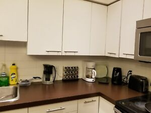 3 bedroom apartment for rent UBCO