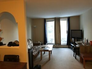 1 Bedroom Apartment Sublet