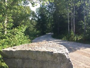 Land for sale Crystal Lake Rd Kinmount 2.61 acres