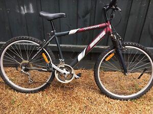 Northern star terramax mountain bike