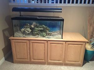 Fish Tank for sale 65gallon
