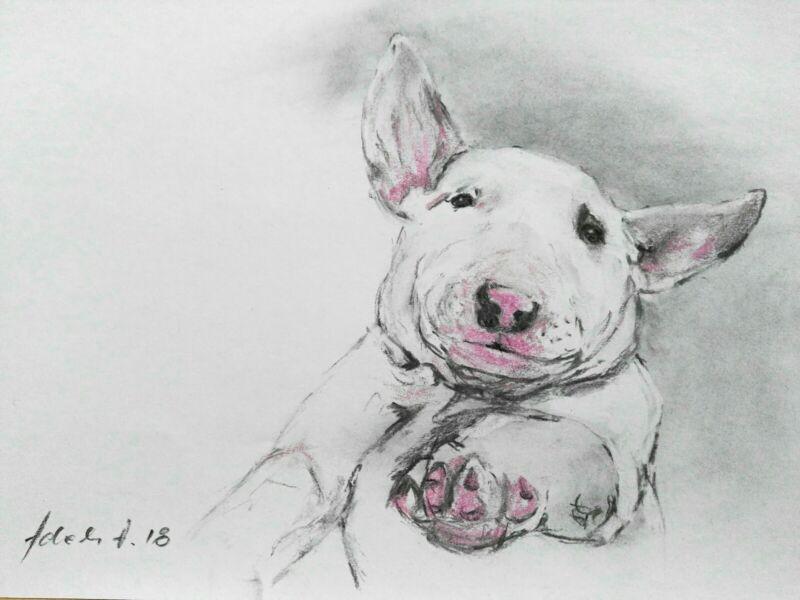 English+Pitbull+Terrier+Dog+Charcoal%2FChalk+Drawing+A4+Original+Art
