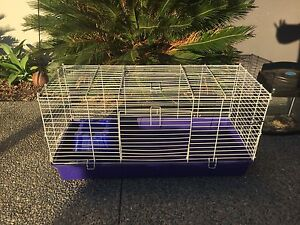 A big Guinea Pig or Hamster cage for sale with accessories Carrara Gold Coast City Preview