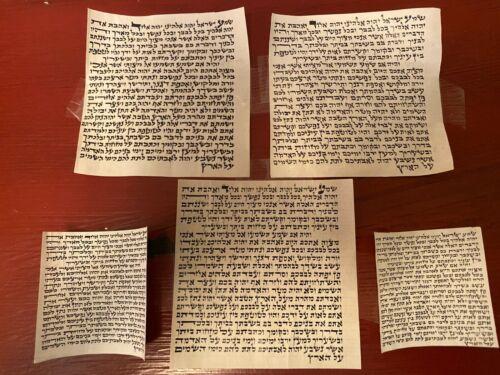 5 Mezuza Mezuzah Klaf Scroll Parchment Judaica