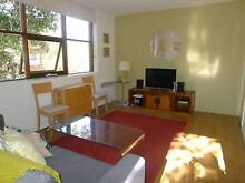 Fully Furnished Apartment on beach in Elwood Elwood Port Phillip Preview