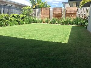All aspects of home maintenance and garden care Kippa-ring Redcliffe Area Preview