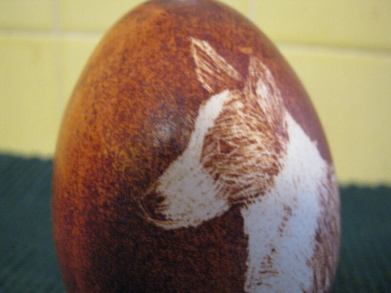 Impressive blown GOOSE EGG Scratched & Dyed w/ CORGI DOG, Pysanky after Roguery