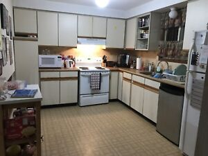 5 bedrooms students house available May1