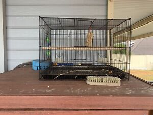 Medium sized Bird Cage with carry handle and perch
