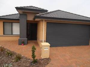 Beautiful 3 x 2 home in Sinagra Sinagra Wanneroo Area Preview