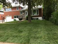 VICTOR LANDSCAPING - SOD - NEW GRASS