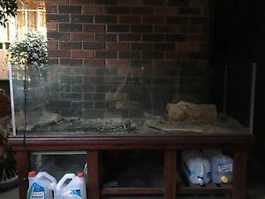 6,2,2 ft fish, reptile,lizard tank/ aquarium Wheelers Hill Monash Area Preview