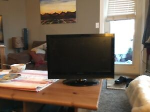 19inch HDMI TV/Computer Screen w/ built in speakers