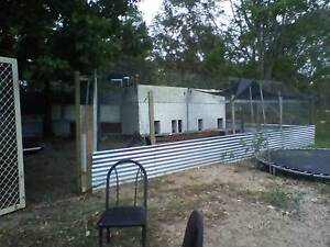 Dog kennels with enclosure Ipswich Ipswich City Preview