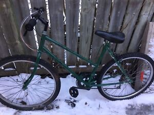 Green Basted  bike