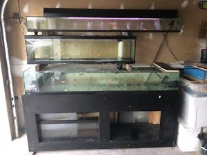 Tank set up for sell