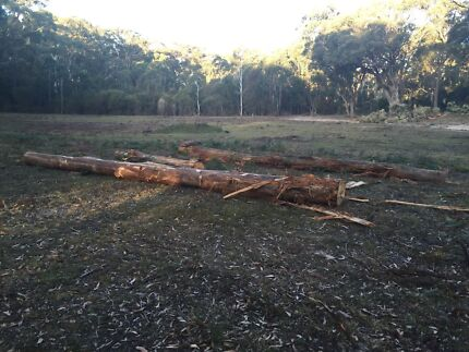 Firewood Processor required  Tallong Goulburn City Preview