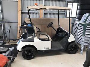 EZ-GO Golf buggy Ingleburn Campbelltown Area Preview