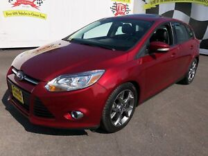 2014 Ford Focus SE, Automatic, Leather, Sunroof, 66,000km