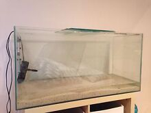3 ft fish tank + accessories Bolwarra Maitland Area Preview