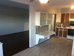 *PRICE REDUCED Renovated duplex for rent at Dalhousie $1600/mo!