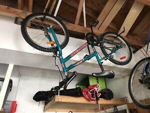20 inch super cycle bike