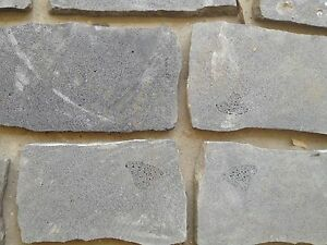 Bluestone Pavers (Sawn Bluestone Pitchers) Officer Cardinia Area Preview