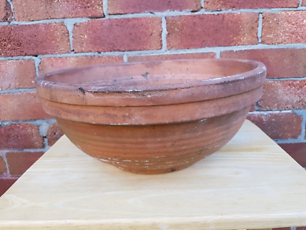 Low and wide terracotta plant pot