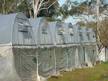 Greenhouse frames (Poly tunnels) for sale Riverstone Blacktown Area Preview