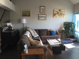 Renovated big bright 3br apartment downtown Milton